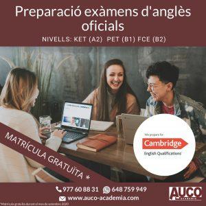 Preparació examens d'anglès oficials